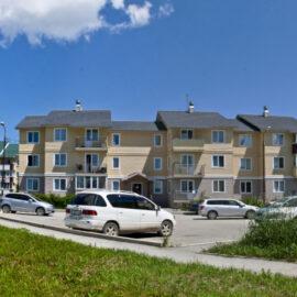 Строительство малоэтажной жилой застройки в с. Троицкое